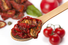 Sun dried tomatoes with basil and fresh tomatoes Royalty Free Stock Images
