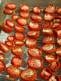 Sun Dried Tomatoes on a simple Drying Tray Stock Photos