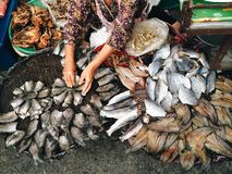 Sun dry fish. Stall selling at fresh market Stock Images