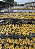 Sun drying fish. At a market in Thailand Royalty Free Stock Photos