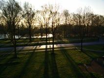 Sun durch Bäume Stockbild