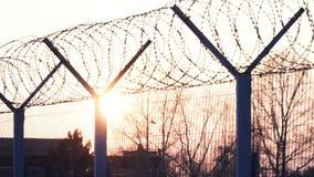 Sun e árvores através da cerca do metal com arame farpado Corrimão, cadeia, limitação filme