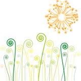 Sun e hierba con remolinos Fotos de archivo