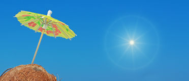 Sun e noci di cocco Fotografie Stock