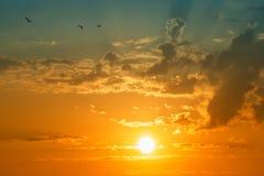 Sun e nubi con gli uccelli Fotografie Stock