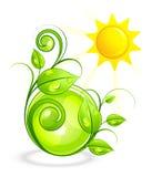Sun e vegetação verde ilustração do vetor