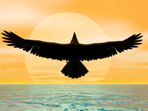 Sun Eagle. Eagle before the sun at sea Stock Photos