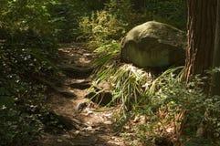 Sun en camino y roca Foto de archivo libre de regalías