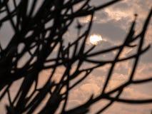 The Sun en Gray Clouds lleno fotografía de archivo