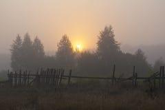 Sun en la niebla Imágenes de archivo libres de regalías