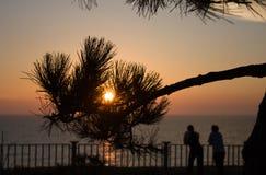 Sun en la puesta del sol Fotos de archivo libres de regalías