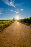 Sun at the End of a Deserted Road with Tree Stock Photography