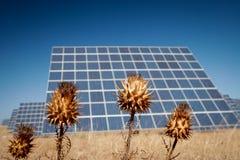 Sun Energy Farm - Stock Image Stock Photography