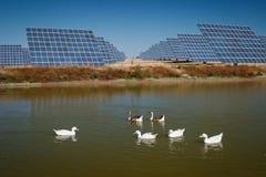Sun Energy Farm - Stock Image Royalty Free Stock Photography