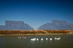 Sun Energy Farm - Stock Image Stock Photo