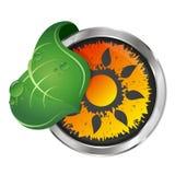 Sun and green leaf symbol Stock Photo