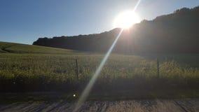 Sun es brillante sobre campo fotos de archivo