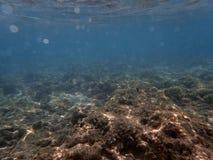 Sun está brilhando na paisagem subaquática Fotografia de Stock Royalty Free