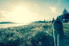 Sun estoura acima do horizonte na para trás-iluminação filtrada do efeito o du Fotografia de Stock Royalty Free
