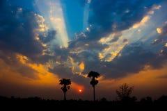 Sun-Explosion Lizenzfreie Stockfotografie
