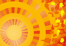 Sun fall background Stock Image