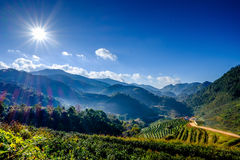 Sun Flare on Blue Sky in Mountain. Sun Flare on Blue Sky at Mountain Stock Photography