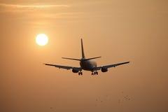 Sun flight Stock Photos