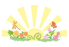 Sun with flora and fauna - vector illustration Stock Photos