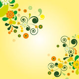 Sun floral background. Stock Image