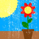 Sun and flower Royalty Free Stock Photos