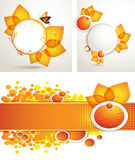 Sun flower with bee and honey brochure layout Stock Photos