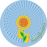 Sun flower in a circle. Stock Image
