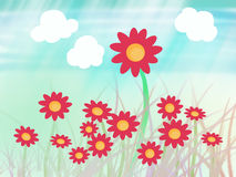 Sun flower with grass Stock Images