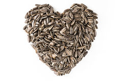 Sun flower seed heart shape. In  white isolated Royalty Free Stock Images