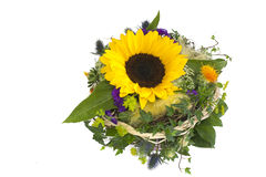 Sun flowers bouquet isolated Royalty Free Stock Images