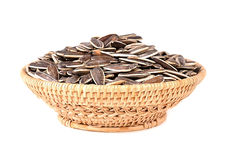 Sun flowers seeds isolated on white background Royalty Free Stock Image
