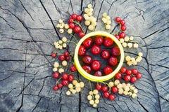 Sun formte Frucht auf hölzernem Hintergrund Lizenzfreie Stockfotos
