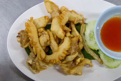 Sun-fried squid Royalty Free Stock Image