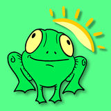 Sun frog Royalty Free Stock Photo