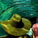 Sun and fun. Enjoying the under water view of the aquarium while shaded from the sun glare Stock Image