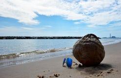 The Sun-Gläser und -kokosnuß auf dem Seestrand mit Hintergrund des blauen Himmels stockfoto