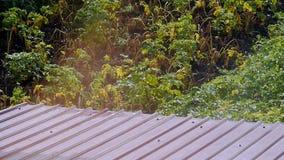 Sun-Glanz auf dem Dach stock footage