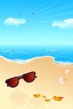 Sun Glass on Beach Stock Images