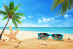 Sun glasses on beach. Starfish and shells on sand. Beach and sea with palm in background Royalty Free Stock Image