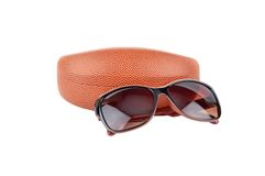 Sun glasses and eyeglasses case Stock Image
