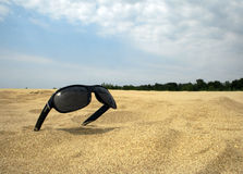 Sun glasses on a gold dust against the blue sky. Sun glasses on a gold dust of the sea beach against the blue sky Stock Image
