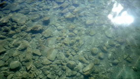 Sun Glistening in Shallow Rock Filled Water stock video footage