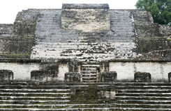 The Sun God Temple. Ruins of the Sun God Temple in Althun-Ha Mayan archaeological site Belize royalty free stock photos