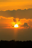 Sun goes down with flying bird Royalty Free Stock Image