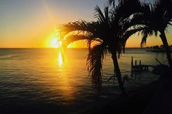 Sun going down in Key Biscayne Florida with palm trees in front royalty free stock photography